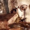 Le souffle voilé de Bones